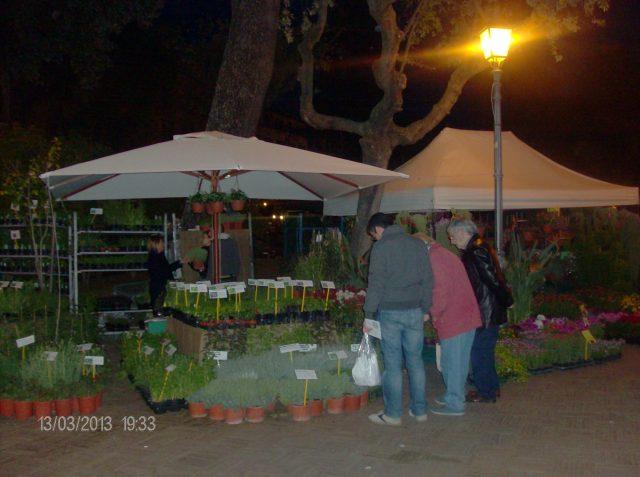 Mostra della Minerva - Villa comunale - Salerno.